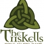 Musica celta mexico d.f. the triskells folk music band